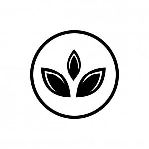 icon 20